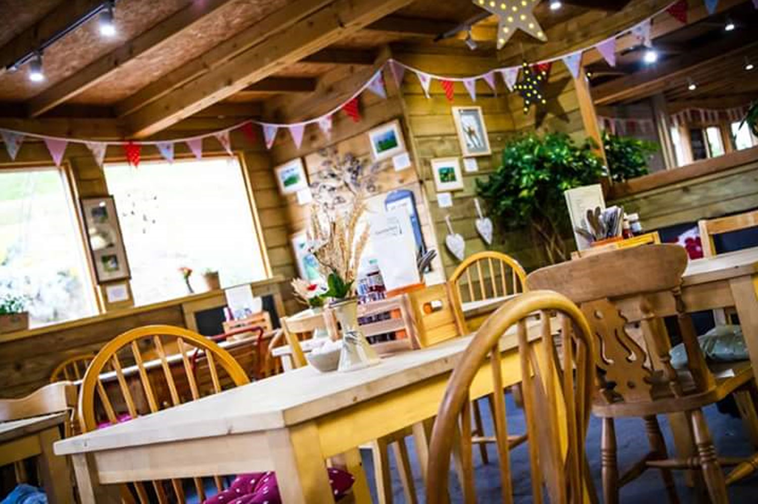 Bovey Tracey Newton Abbot Cafe